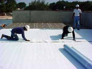 TPO roofing Shreveport LA , TPO roofer Shreveport LA , roofing TPO Shreveport LA , TPO roofing materials Shreveport LA , TPO roof Shreveport LA , TPO roof shingles Shreveport LA , TPO roofers Shreveport LA , TPO roofing companies Shreveport LA , TPO roofing contractors Shreveport LA , Culver TPO roofer Shreveport LA , roofing shingles TPO Shreveport LA , roofing contractor TPO Shreveport LA , roofing company TPO Shreveport LA , TPO flat roof Shreveport LA , TPO roofing tar Shreveport LA , tar and gravel roof TPO Shreveport LA , TPO roofing supplies Shreveport LA , TPO roof tar Shreveport LA , TPO roof contractors Shreveport LA , residential TPO roofing Shreveport LA , commercial TPO roofing Shreveport LA , roofing supplies TPO Shreveport LA , tar roof Shreveport LA , TPO roofing supply Shreveport LA , TPO roofing costs Shreveport LA , TPO roof Shreveport LA , TPO types of roofing Shreveport LA , TPO roofing material Shreveport LA , re roofing TPO Shreveport LA , torch down TPO roofing Shreveport LA